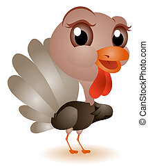 Young Turkey with Clipping Path