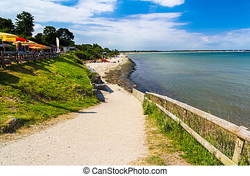 Studland Beach Beach Dorset England UK Europe