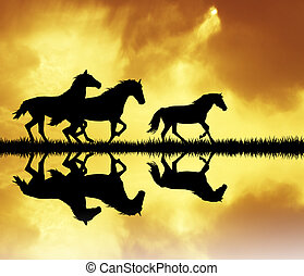 horse running - illustration of horses at sunset
