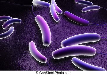 Coli bacteria - Digital illustration of Coli bacteria in...