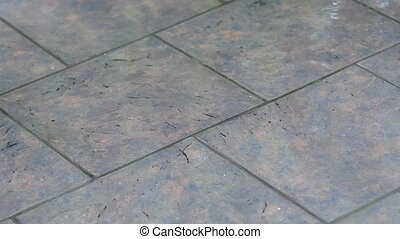 Tile in the rain - Falling raindrops on a tile on the...