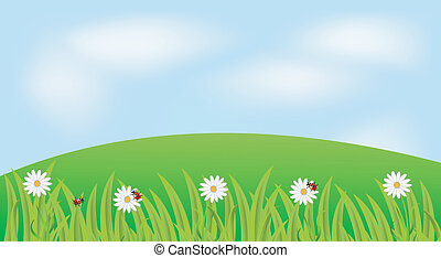 background with the flowers