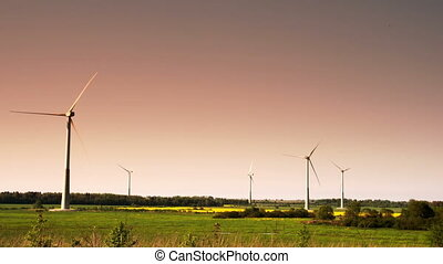 Five windmills in a field on a late afternoon FS700 Odyssey 7Q