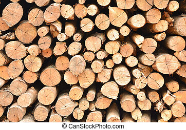Pile of wood logs
