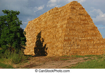 Hayrick - A pyramid of hay and tree with the cloudy sky in...