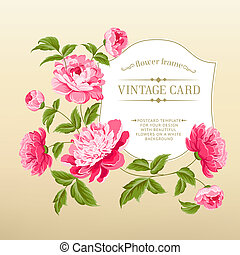 Frame with peonies for vitage card. Vector illustration.