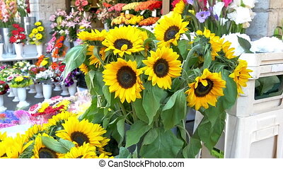 Yellow sunflowers on display in a flower shop The flowers...