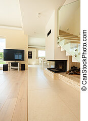 Modern house with open space