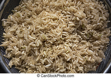 Brown Rice  - A colander with uncooked brown rice.