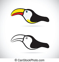 Vector images of hornbills on a white background.