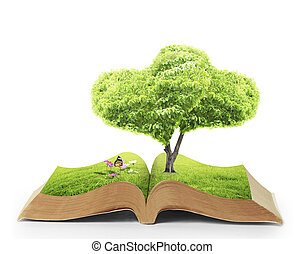 Open book of nature - Open book in green grass, nature