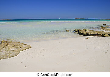 Tropical beach, cuba - A view of tropical beach in cayo...