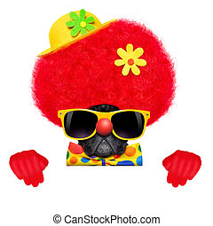 silly clown dog - silly dog wearing clown costume behind a...