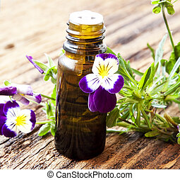 Pansy Essence - Pansy Essential Oil Bottle with Bright...