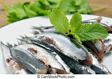 raw spanish boquerones, anchovies typical in Spain