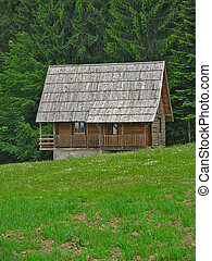 Wooden house - Mountain wooden house near large forest