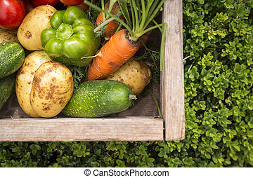 mixed organic vegetables in wooden box - organic vegetables...