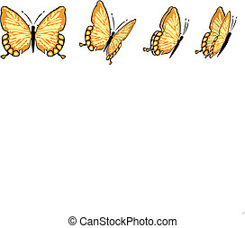Butterfly - the same butterfly in four different views