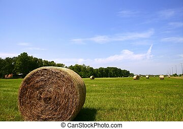 Golden Straw Hay Bales in american countryside on sunny day