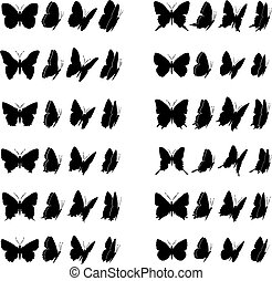 Butterfly collection 1