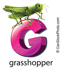 A letter G for grasshopper - Illustration of a letter G for...