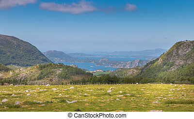 Norwegian meadow and fjord - View over a lush green...