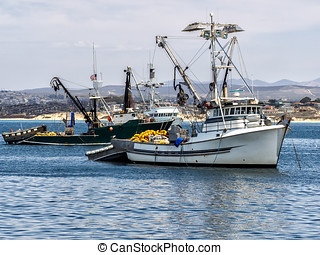 Fishing vessels in Monterey harbor, California USA
