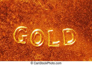 Gold Coin - Micro Photo of a Gold Coin