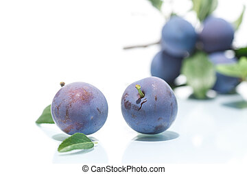 ripe juicy plums isolated on white background