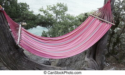 Hammock on tree - Hanging on a tree hammock by the sea