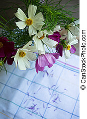 Coreopsis flower in interior - Vase with coreopsis flowers...