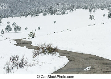 newly plowed winding forest road - freshly plowed snow...