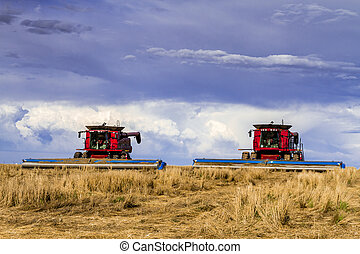 Large Red Combines Agriculture Equipment - 2 large red...