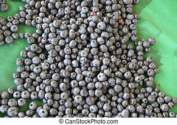 Harvest of fresh acai berries