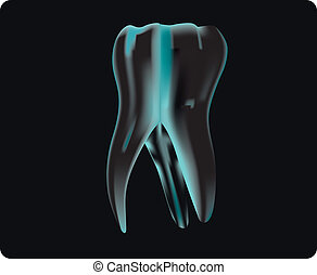 X-ray of the tooth to the dentist examination. Vector...