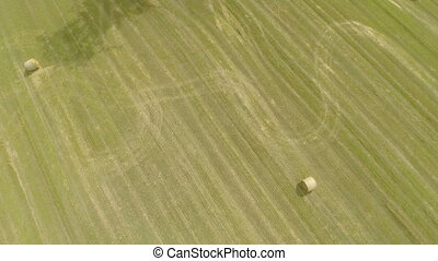 Aerial view of harvested barley field - Flying over a...
