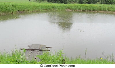 pond fish rain bridge - lake pond bridge and fish eat...