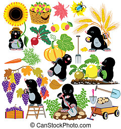 mole working in the garden - set with mole working in the...
