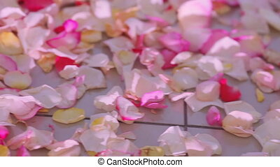 Rose petals on floor - Changing light illuminated petals on...