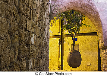 Old Jaffa the hanging tree - Beautiful photo of the hanging...