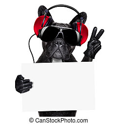 dj dog - cool dj dog listening to music holding a white and...