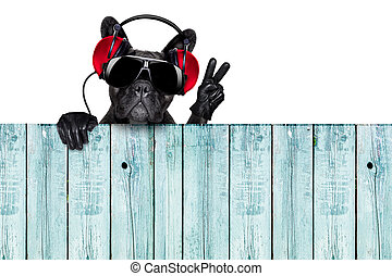 dj dog listening to music behind an empty and blank wood...
