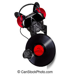 dog record vinyl - dj dog playing music record beside a...