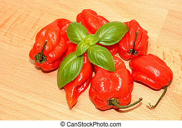 Red Scotch Bonnet Peppers - Hot red scotch bonnet peppers on...