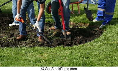 People dig the ground with shovels