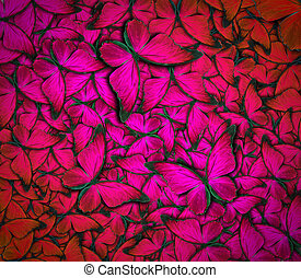 beautiful butterfly background - beautiful background with...