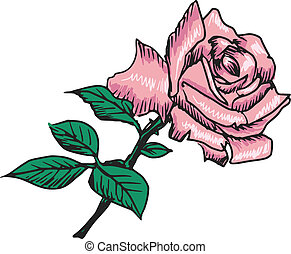 rose with leaves - hand drawn, sketch, black illustration of...