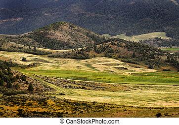 Hilly Mountains Farming - Hilly mountains farming scenery