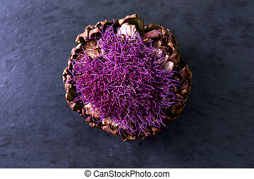 Purple Flowering Artichoke - Dried Artichoke on black...