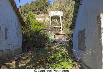 yard without a care in abandoned house